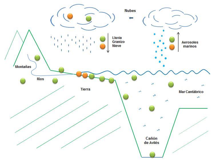 Bacterias del agua de lluvia pueden ser fuente de nuevos antibióticos y antitumorales