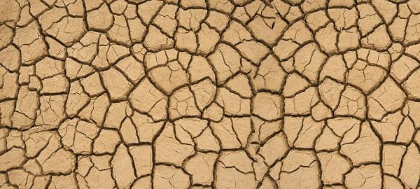 Cada año, un 1% de agua menos