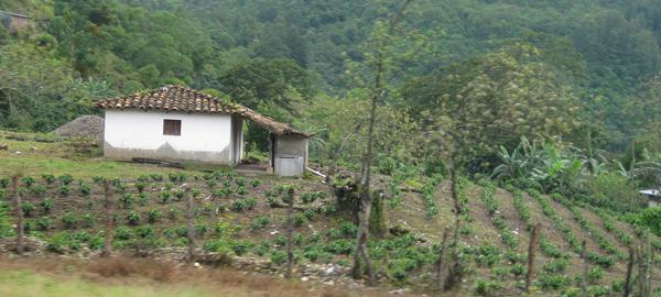 Honduras firma un acuerdo para mejorar el acceso al agua en las zonas rurales