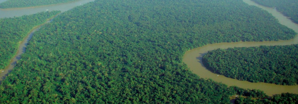 La deforestación asola la Amazonía