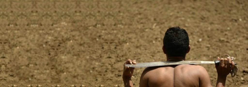 La sequía hace estragos en Centroamérica