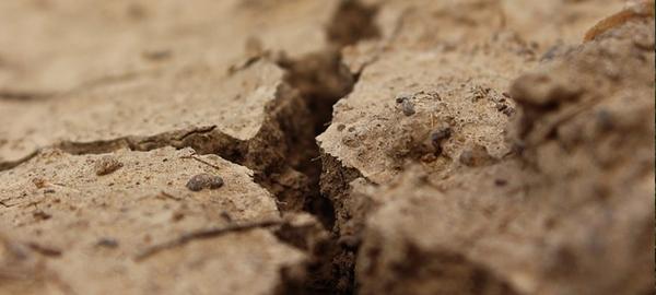 Segovia cierra sus fuentes y corta el riego de jardines por la sequía
