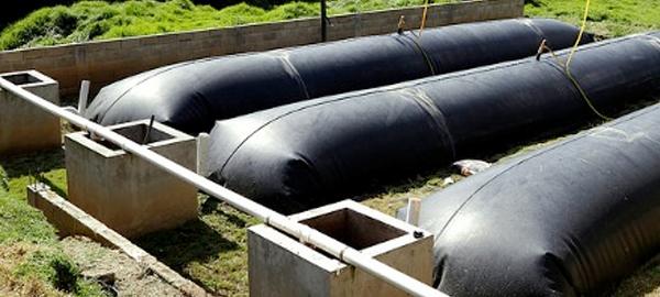 Un biodigestor abastece de energía a 3.000 granjas en América Latina