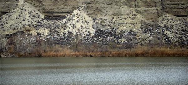 Cerca de la mitad de los humedales españoles se encuentran en mal estado