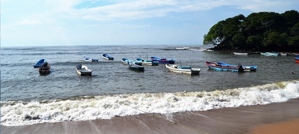 El cambio climático acaba con arrecifes de coral en el Salvador