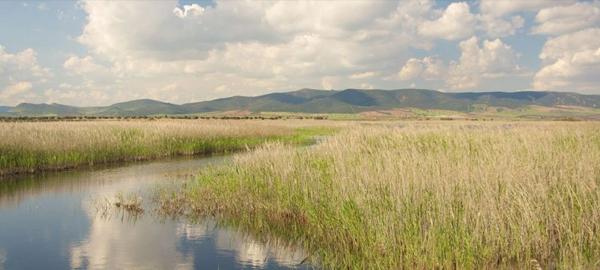 El centro del Agua cumple veinte años