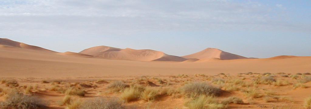 Energía térmica de instalaciones de energía solar concentrada en la arena del desierto