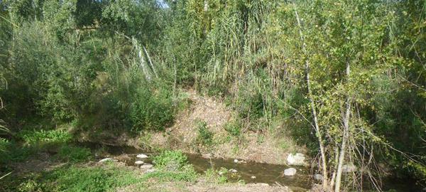 La Agencia Catalana del Agua mejora tramos del río Tenes en el Vallès Oriental