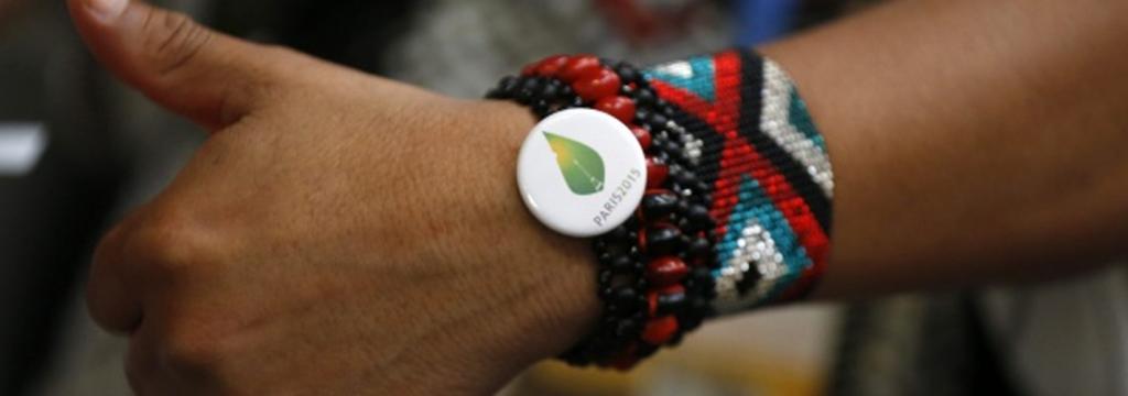 Las ONG califican la COP 21 como un gran logro del medio ambiente en 2015