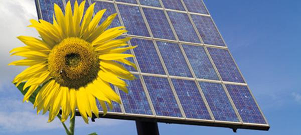Las energías renovables provocan la caída del precio del crudo
