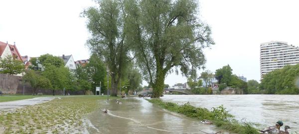 Medio Ambiente participa en un proyecto para prevenir inundaciones