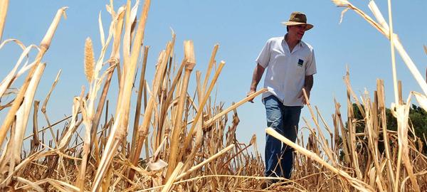 El Gobierno toma medidas para llevar agua a los agricultores murcianos