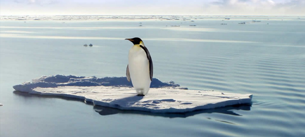 Investigadores alertan que la Antártica se derrite