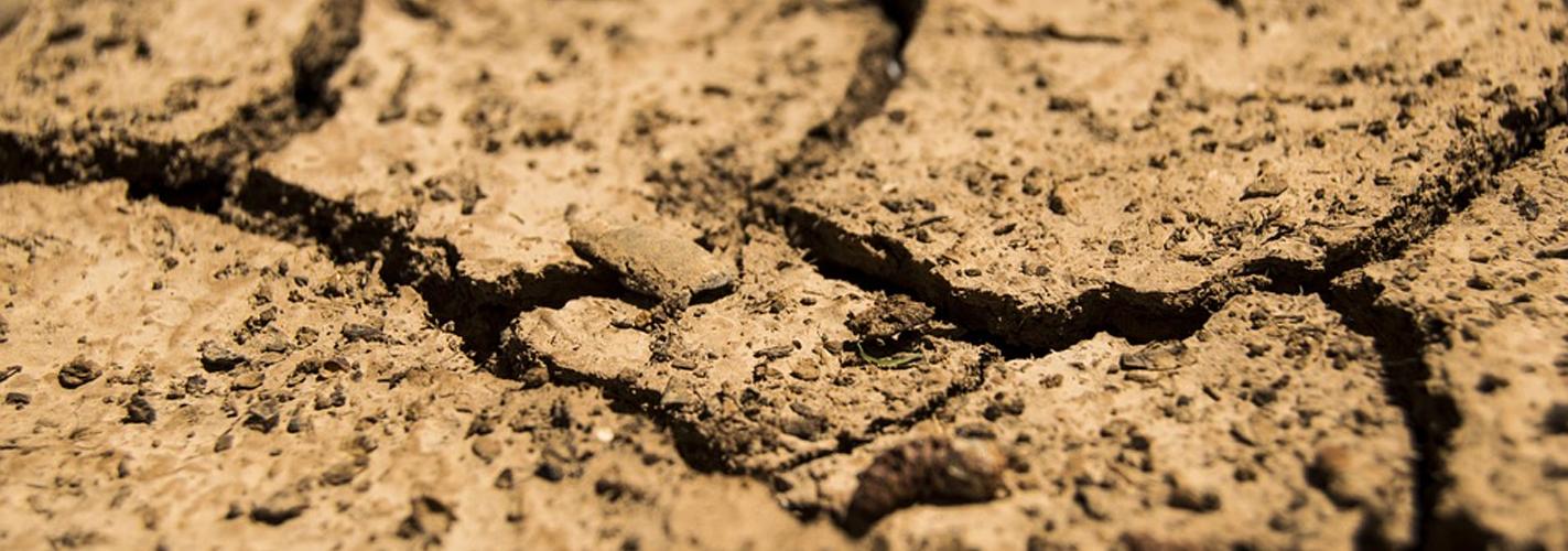 La falta de lluvia genera el aumento de CO2 en el ambiente