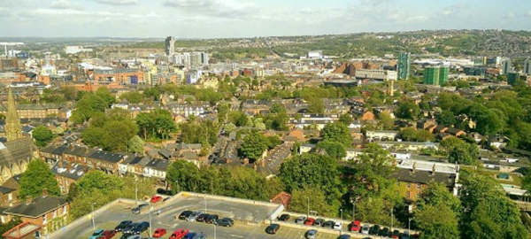 La población de Sheffield consigue parar la tala masiva de árboles en su ciudad