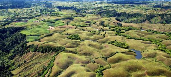 Los bosques y los humedales, piezas clave en la lucha contra el cambio climático