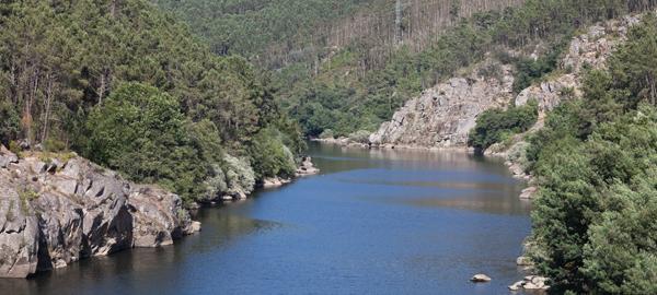 Un estudio revela que el 80% de los ríos gallegos son saludables