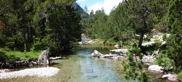 14 meses de prisión y 1,2 millones de euros de multa por contaminar agua potable en Torelló