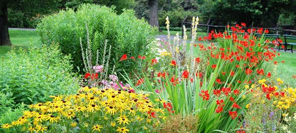 Apuestan por una jardiner a ecol gica en los municipios for Jardineria ecologica
