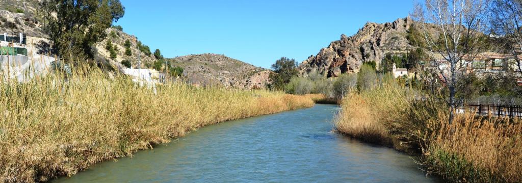 La recuperación del río Segura, premiada internacionalmente