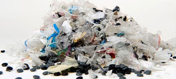 Medio Ambiente y Ecoembes defienden el ecosistema marino