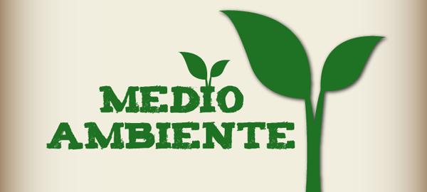 ¿Cuántos españoles respetan el medio ambiente?