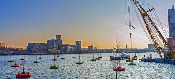El puerto de Rotterdam acoge un bosque flotante