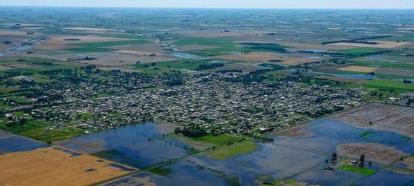 El tiempo ha deforestado dos millones de hectáreas en Argentina