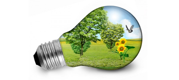 La innovación, herramienta clave para la sostenibilidad