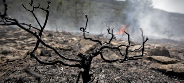 Ecologistas alertan del impacto ambiental del pacto de Europa y EEUU
