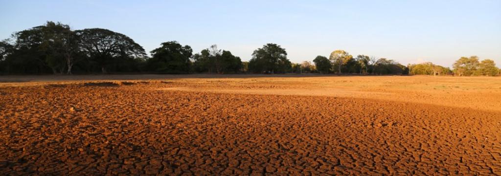 El cambio climático en imágenes