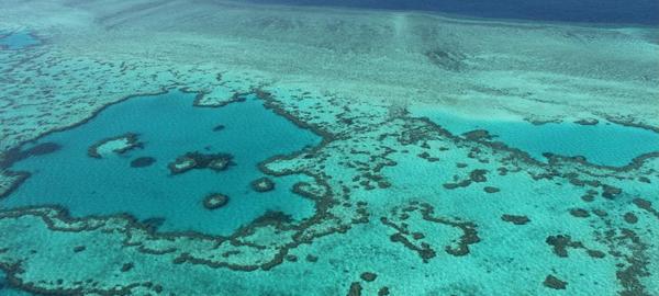 El polvo de carbón amenaza los ecosistemas marinos
