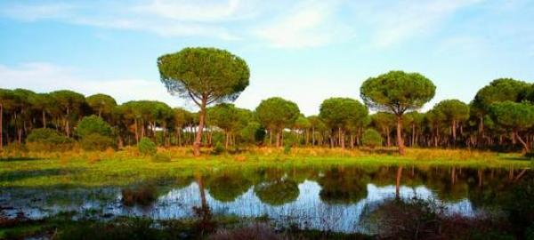 Europa pide a España que aclare el proyecto de Gas Natural para Doñana
