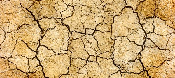 Los agricultores murcianos empiezan a barajar medidas para la sequía del verano
