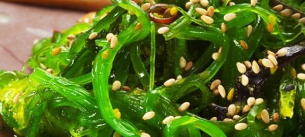 ¿Qué beneficios tienen las algas en la alimentación humana?