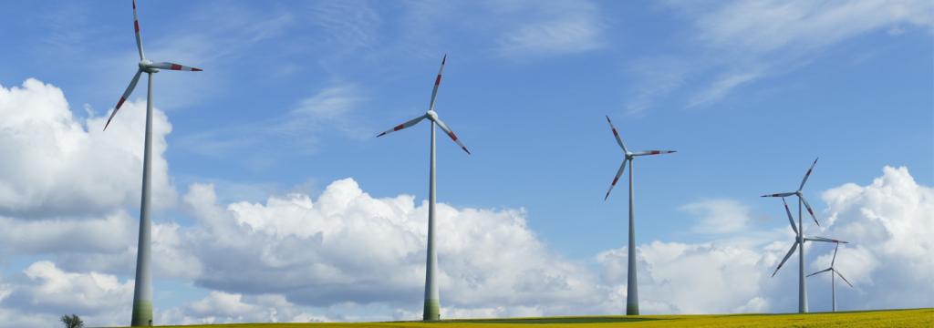 Texas se interesa por las energías renovables de Canarias