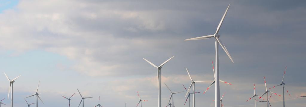 Un municipio gaditano gana el premio a la integración rural de la energía eólica