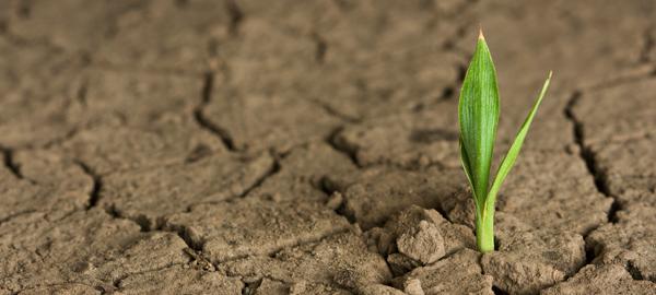 Aragón apuesta por un cambio ético en la lucha contra el cambio climático