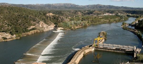 Ecologistas piden la demolición de obstáculos en los ríos