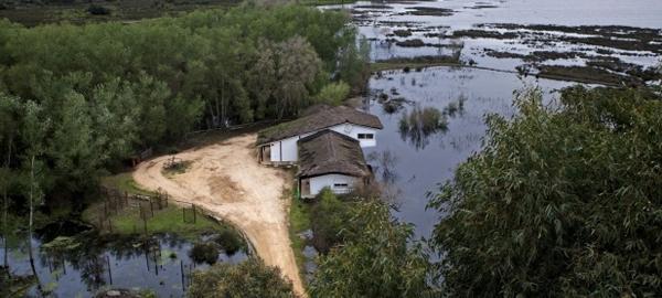 WWF exige que se declare oficialmente «en riesgo» el acuífero de Doñana