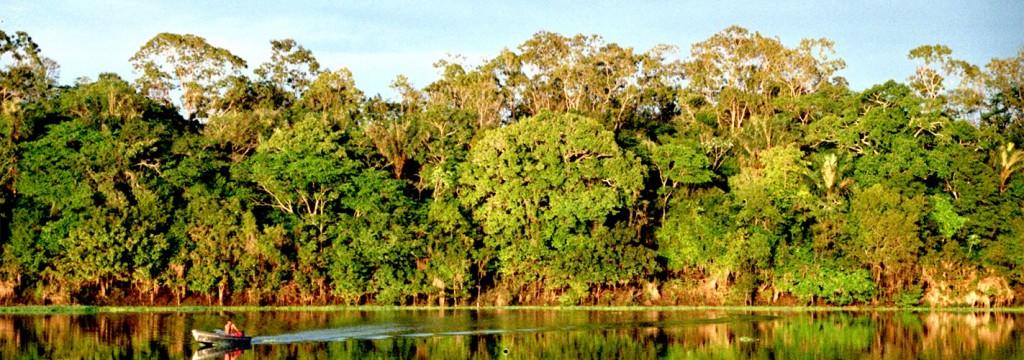 La ampliación de la extracción de petróleo en la Amazonía amenaza a 745 especies