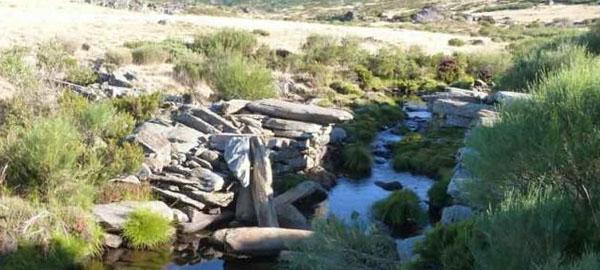 La sequía puede afectar a la vida piscícola de algunos ríos