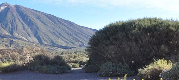 Tenerife y Gran Canaria, en alerta hoy por riesgo de incendio forestal