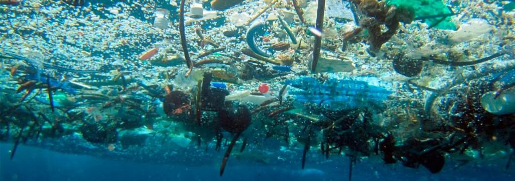 Un 'océano de plástico' está destruyendo la vida marina en el Pacífico