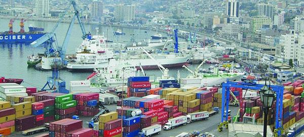 Los contenedores marítimos propagan plagas y enfermedades