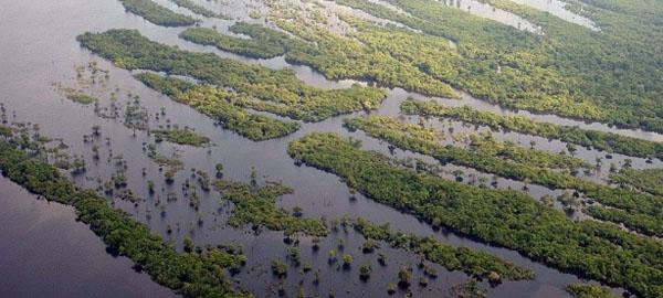 Brasil ratifica el Acuerdo de París contra el cambio climático
