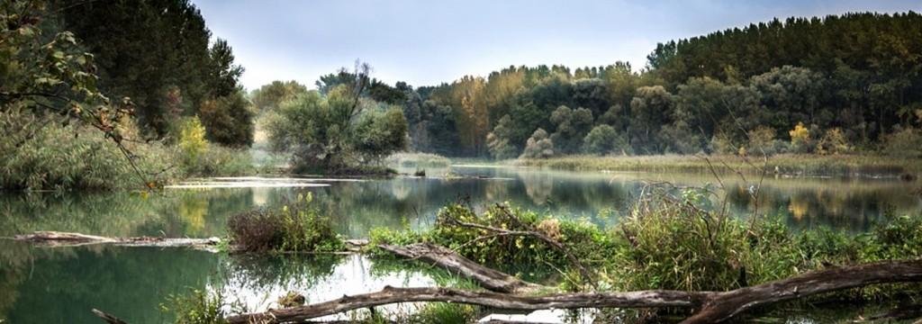El aumento de las temperaturas está matando la biodiversidad de ríos y lagos