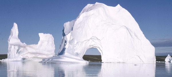 Hallan en Groenlandia los fósiles más antiguos conocidos