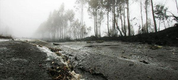 La lluvia arrastra las cenizas de los fuegos y contamina el agua en As Neves (Galicia)