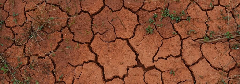 La temperatura podría aumentar hasta 7 grados por los gases de efecto invernadero